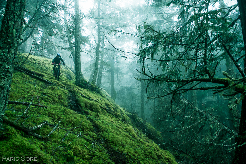 More moss than dirt on the island, Jill rides through the enchanted forest of Orcas Island.