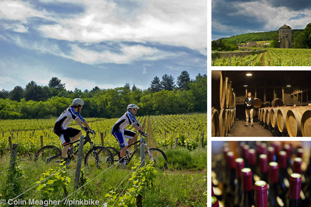 Lapierre is located on the outskirts of Dijon--a mere ten minute pedal from vinyards that produce some of the most expensive wine in the World. These vinyards and the forests that surround them are laced with trails--the same trails that Gilles Lapierre first tried mountain biking on.