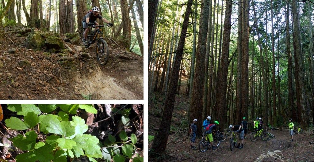 Santa Cruz Bronson - RC and friends in Santa Cruz