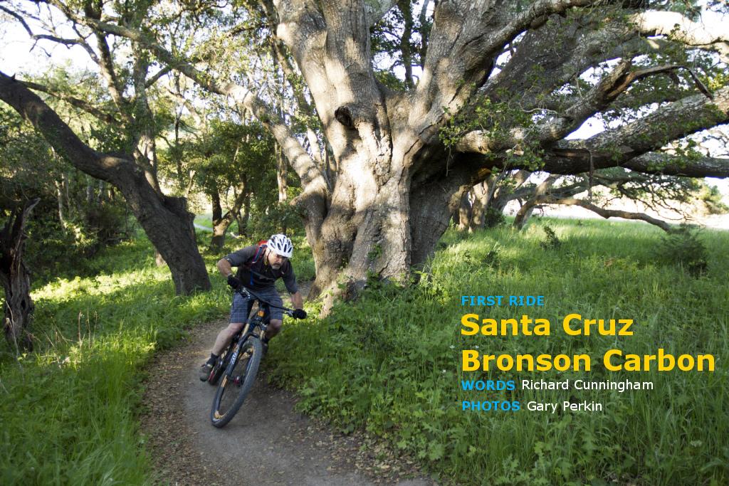 Santa Cruz Bronson C