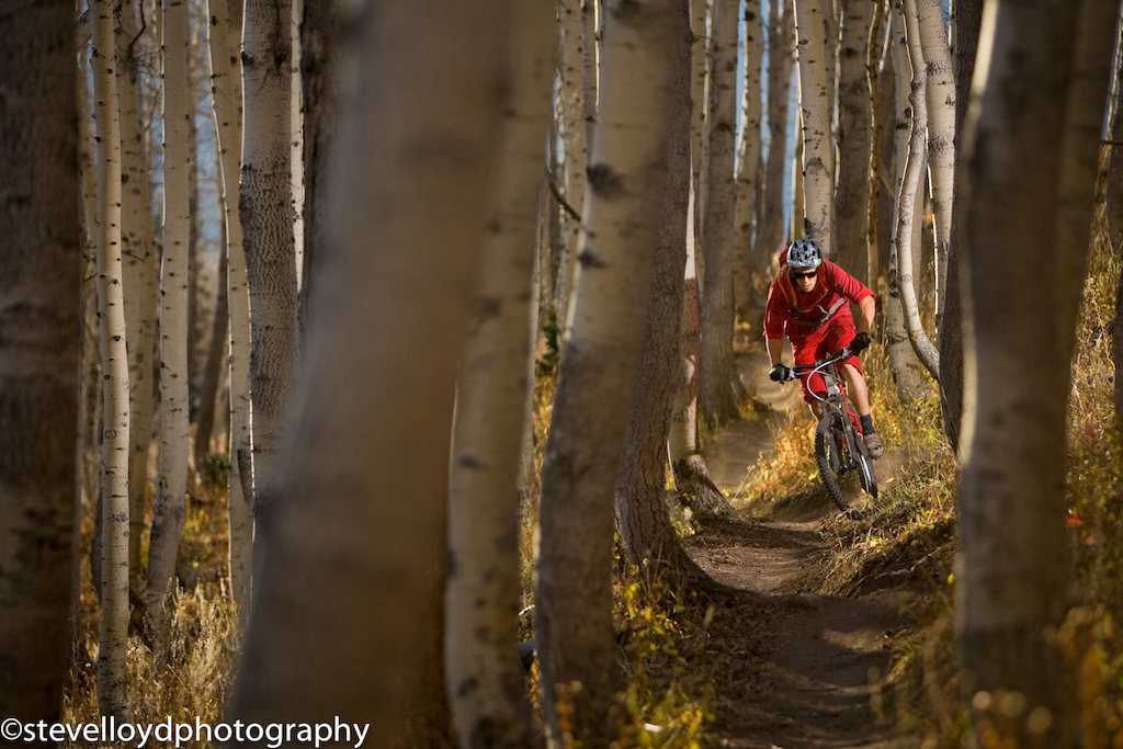 Eric porter shredding the crest trail during fall.