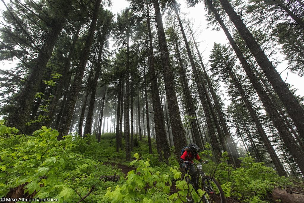 Oregon Enduro 1 - Hood River Race Report - Pinkbike