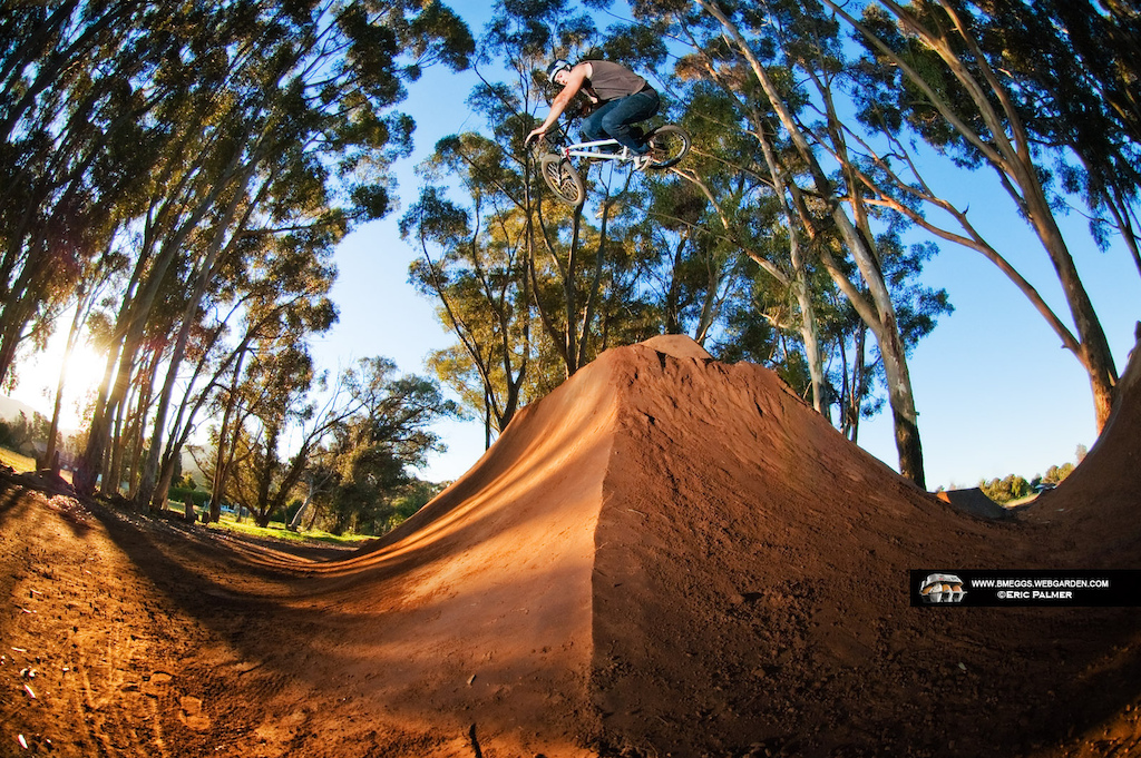 New Pic of the Week on http://bmeggs.webgarden.com/