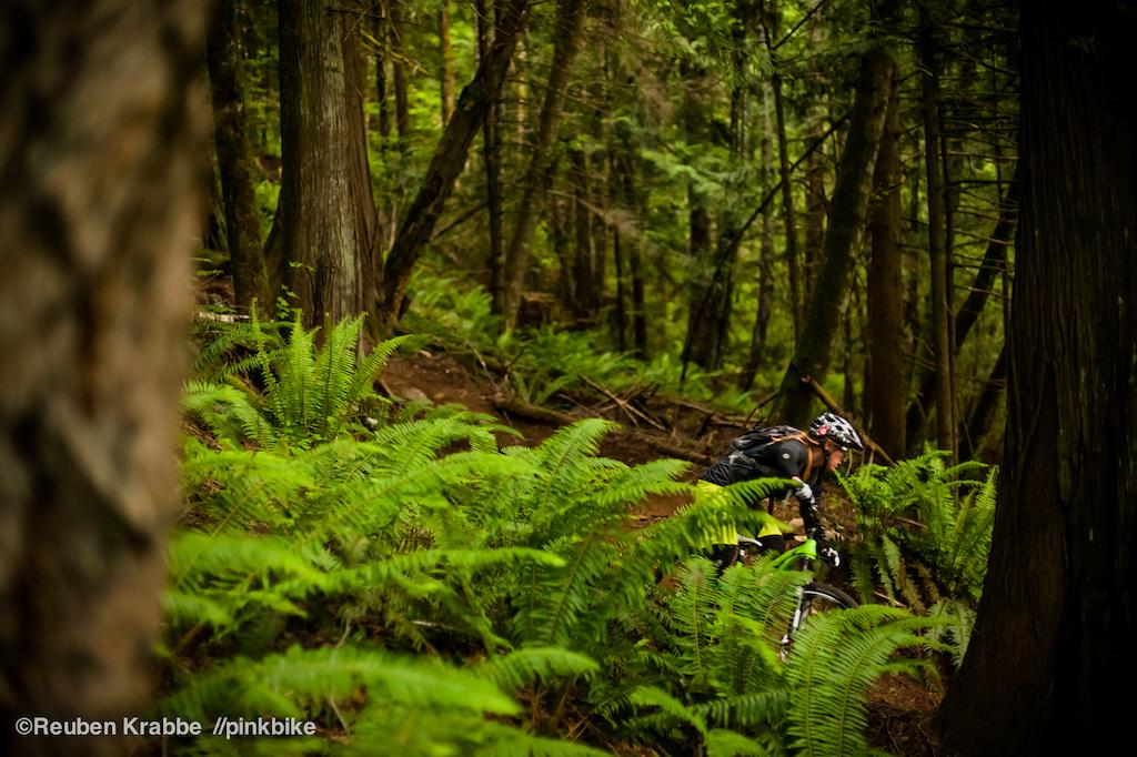 Sarah Leishman weaves through trees on Vedder