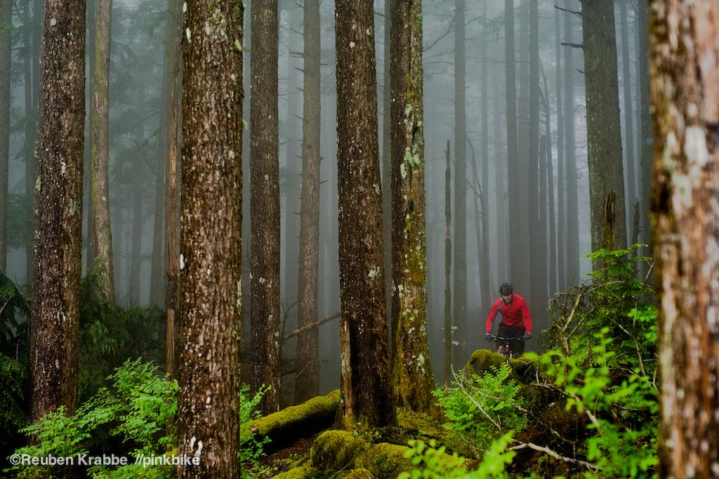 Kevin Koopmans president of FVMBA rides through foggy trees on sumas
