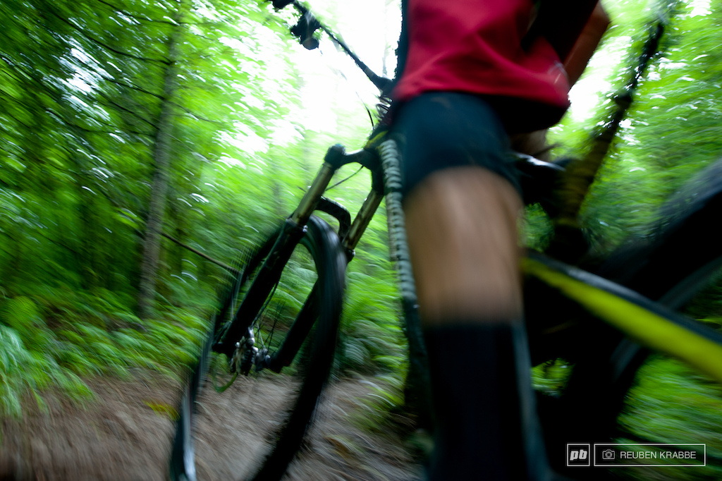 Short punchy ascents break up the high speed singletrack of Squidline