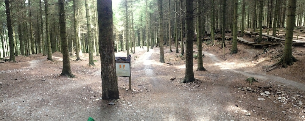Panorama of the Sills Area in Llandegla forest.