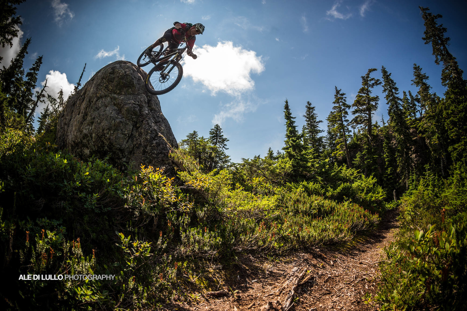 Tippie s nose for finding steep ride-able lines is second to none