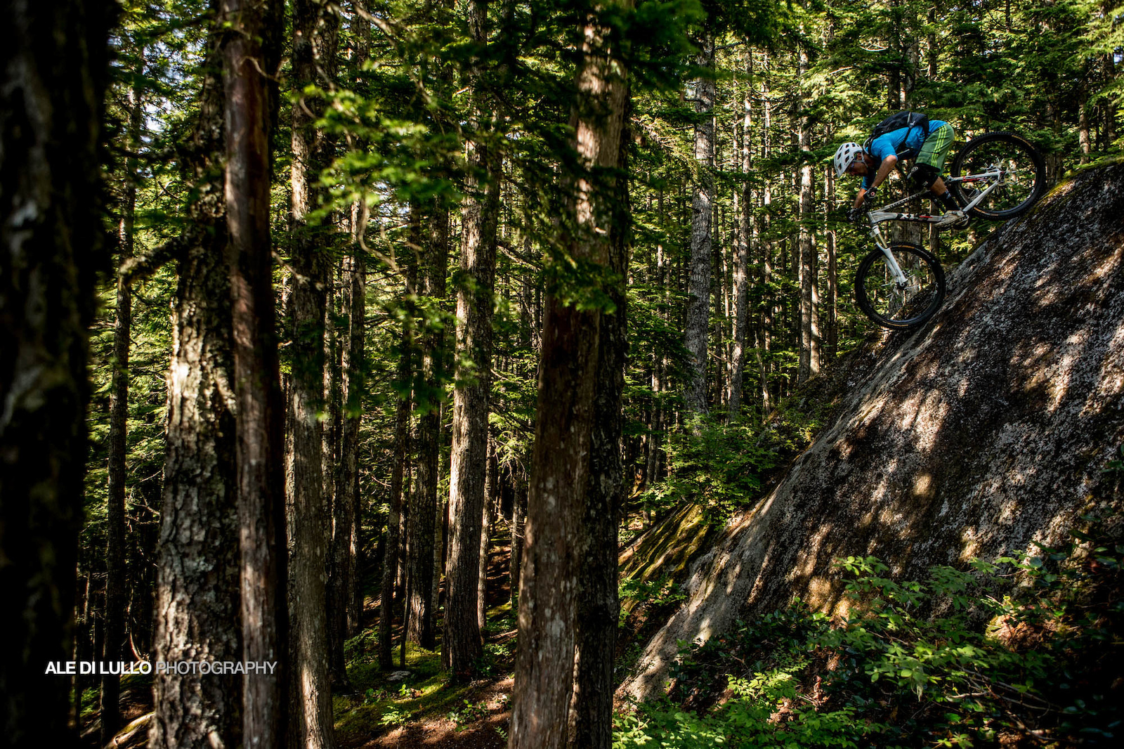 Steep and Deep in the woods. The rock lines stack up on top of each other like a waterfall.