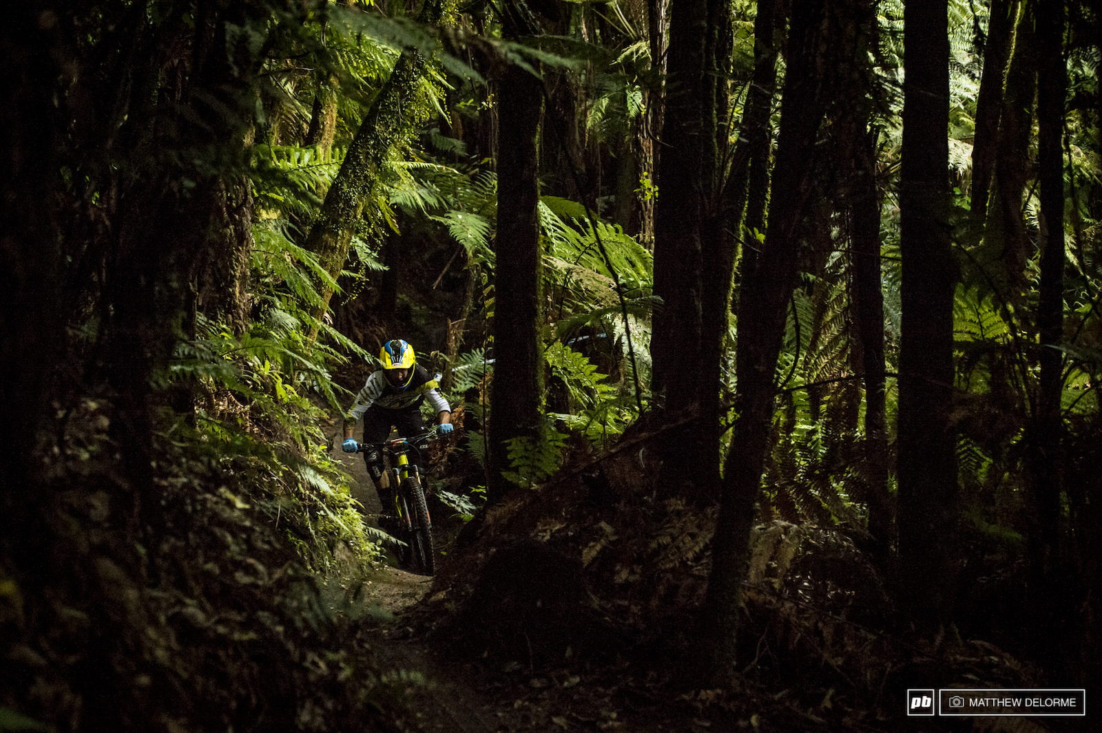 Dan Atherton was pushing hard through the dark woods of stage one this morning.