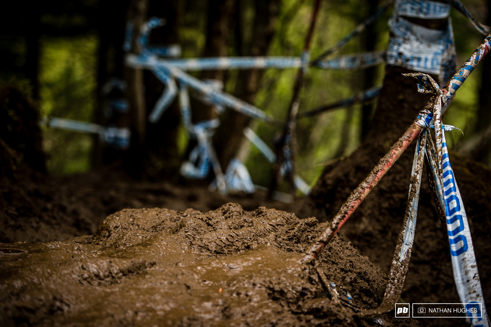 Fort William 2015... a portrait. These dark sodden woods were where this race was won and lost.
