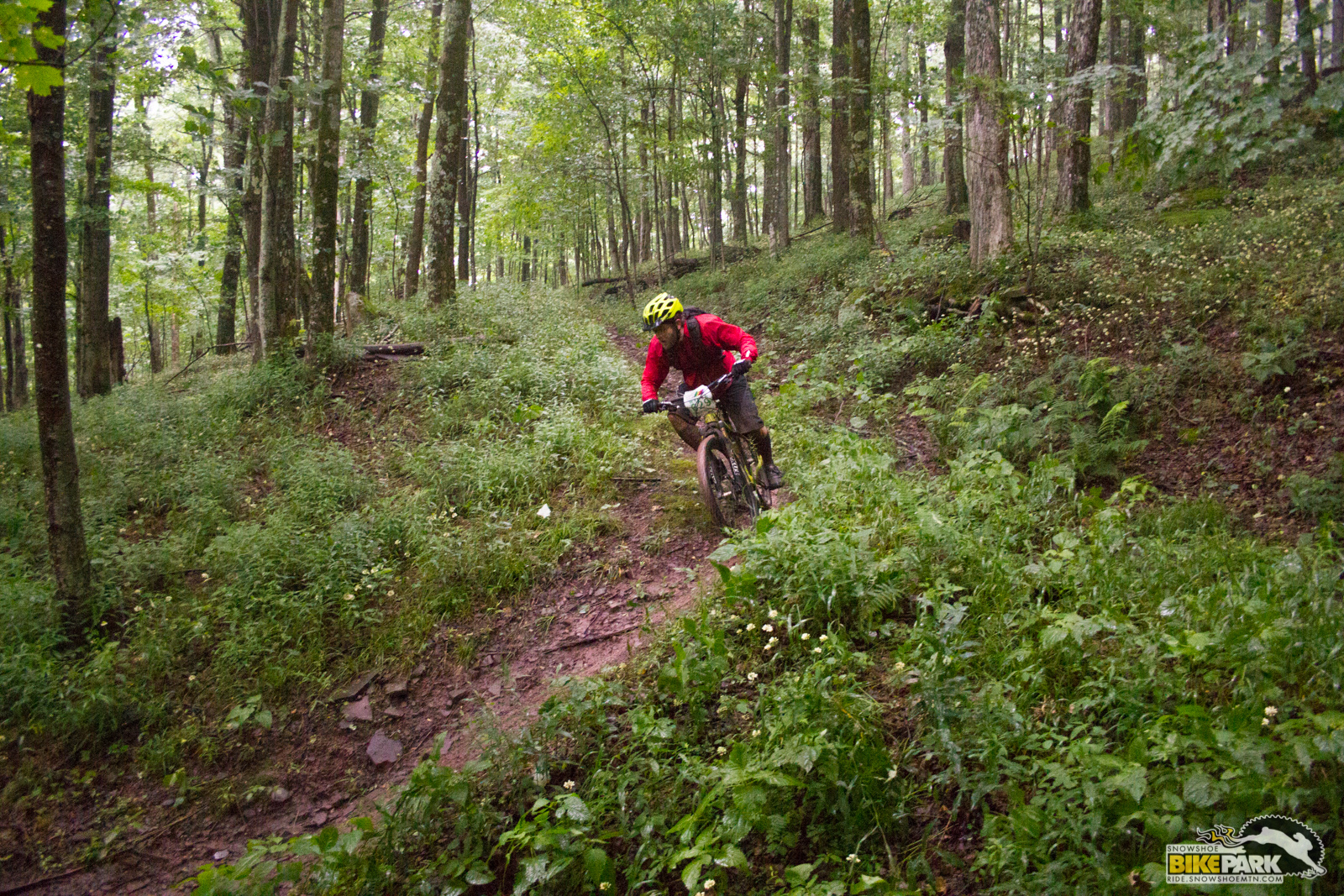Duane Swanson III on stage 7 in route to taking the overall in the hardtail class.