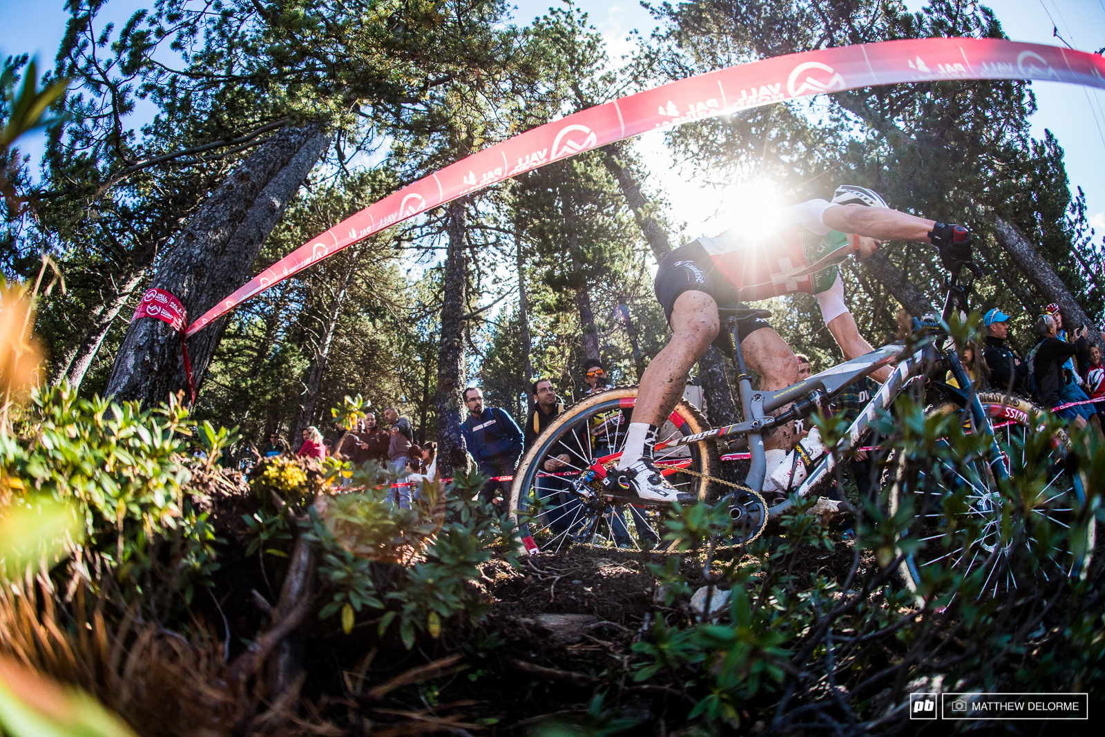 Nino Schurter slaying the off camber roots.