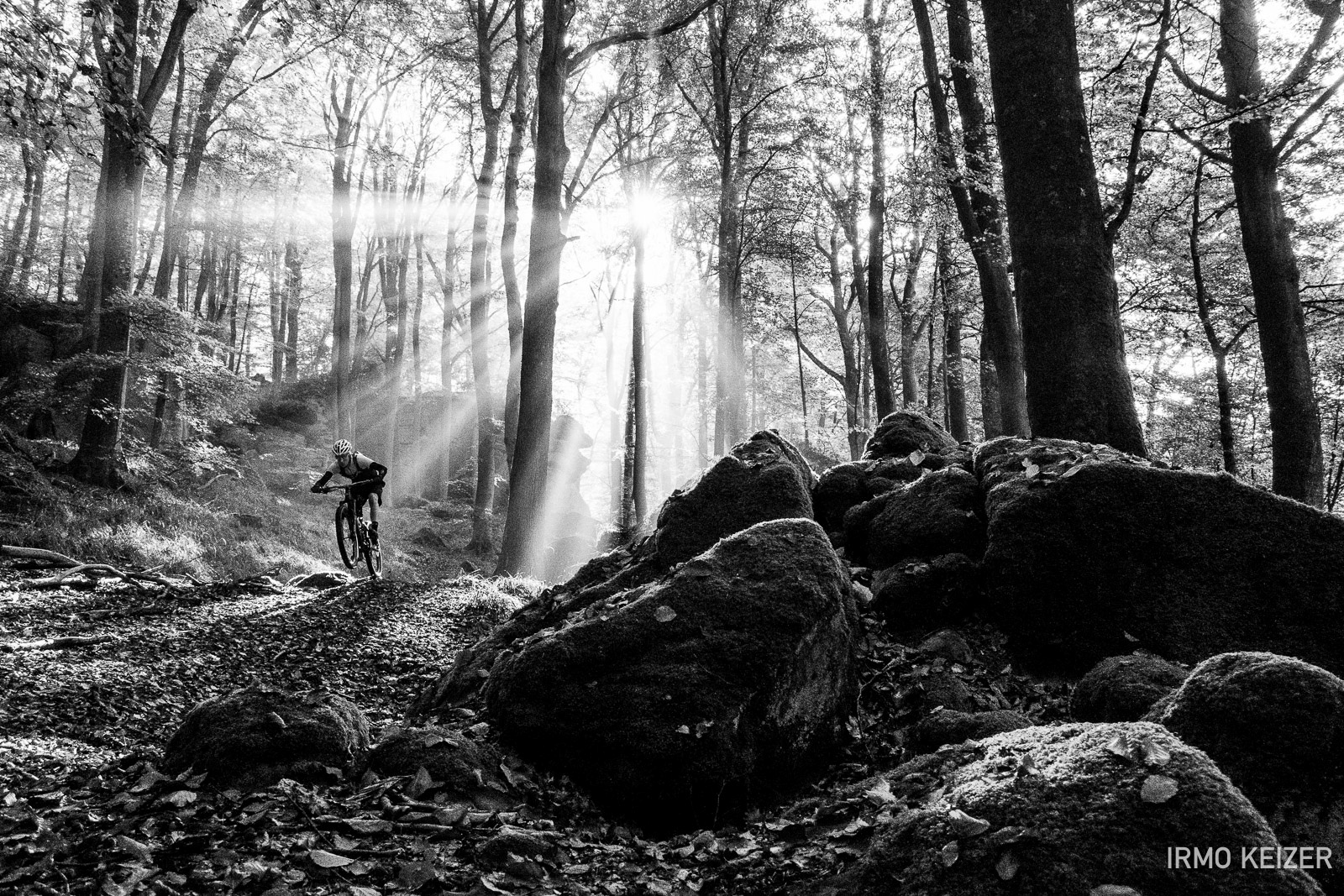 Mullerthal Luxembourg. Awesome trails amazing light.
