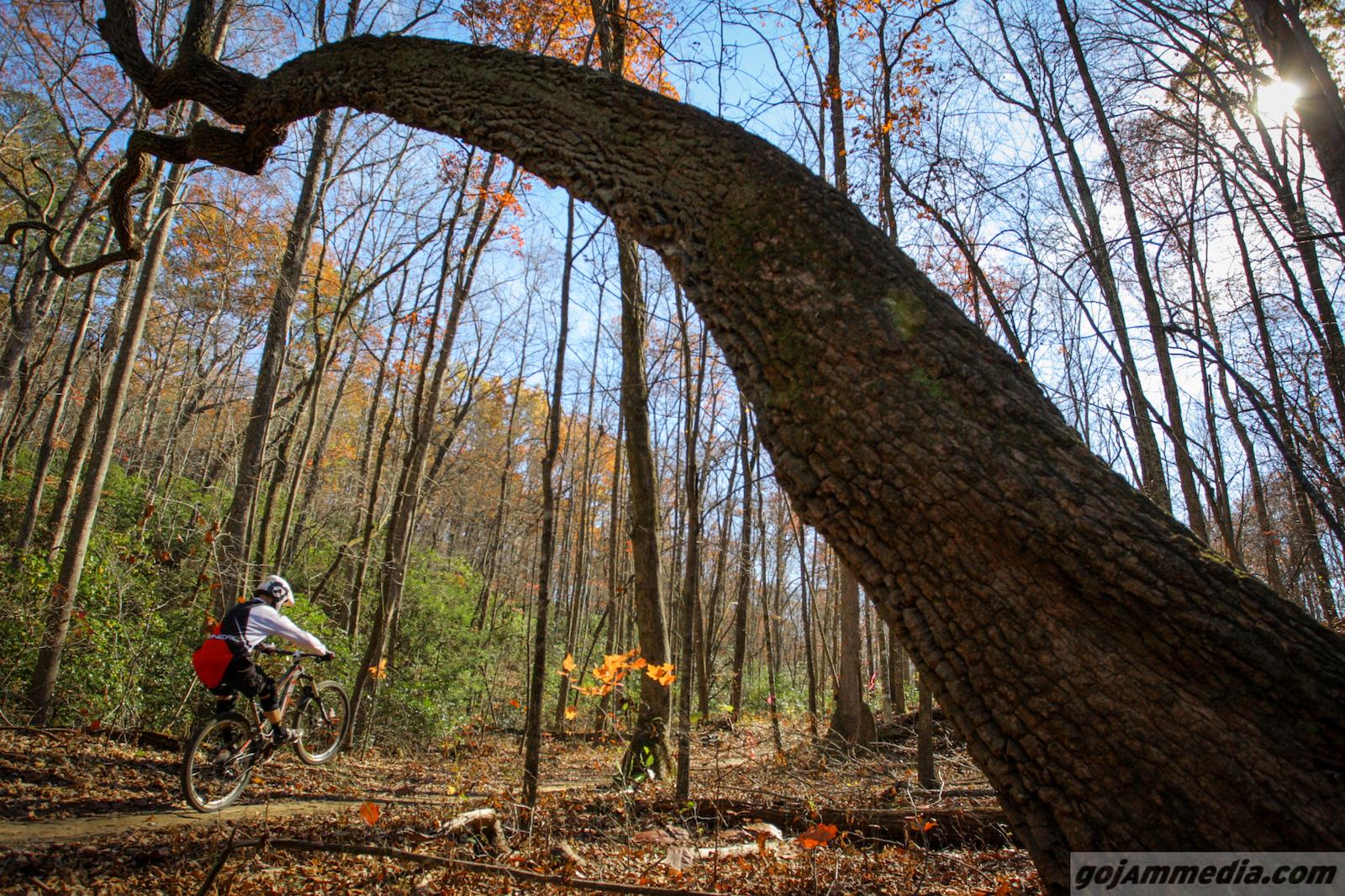 The Upstate\'s 2015 Cranksgiving Weekend - Race Recap - Pinkbike