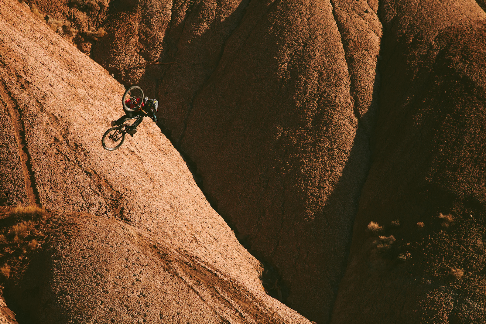 Images for Cam McCaul - Sweet Morning Light. Photo by Nic Genovese