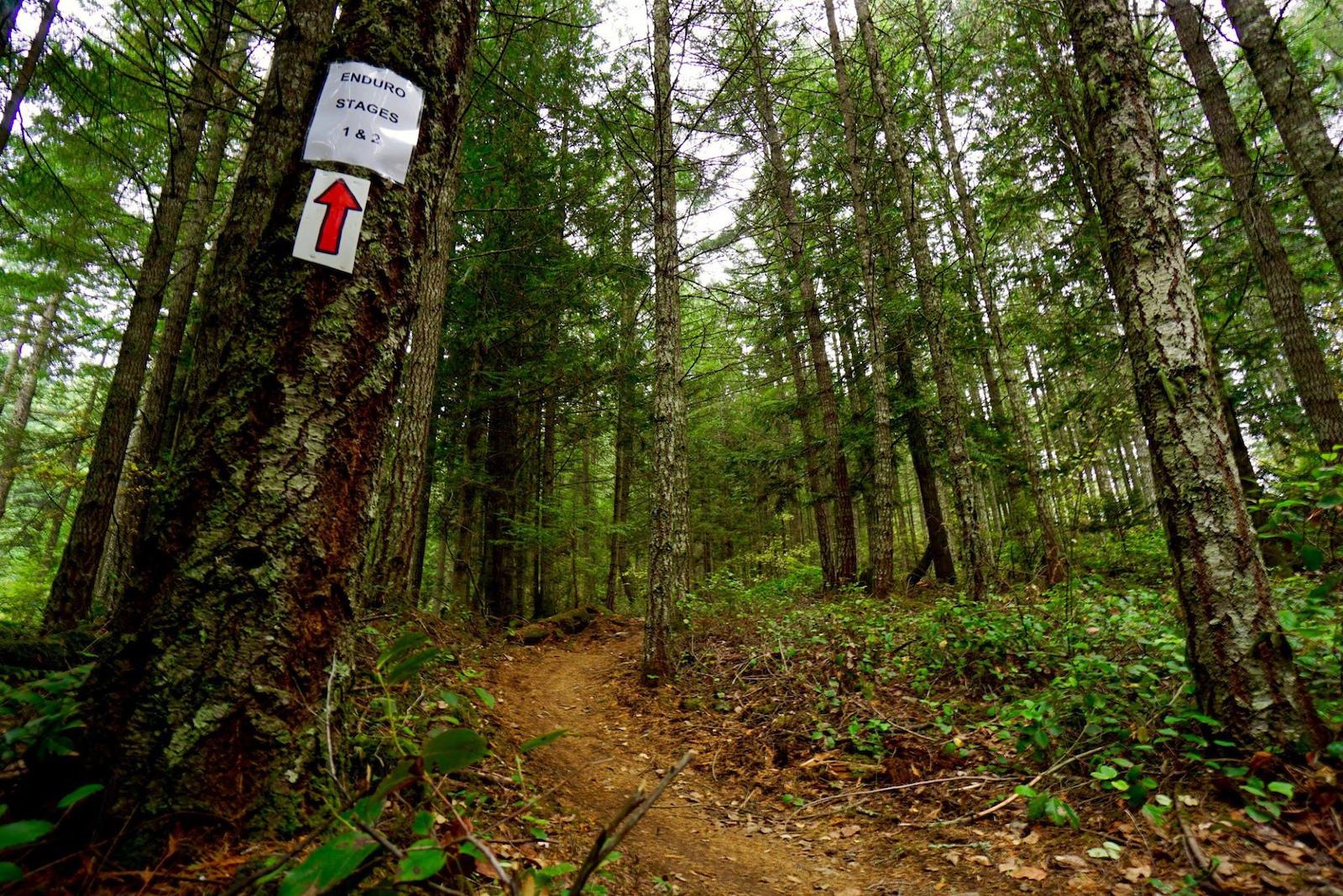 Maple Mountain Enduro
