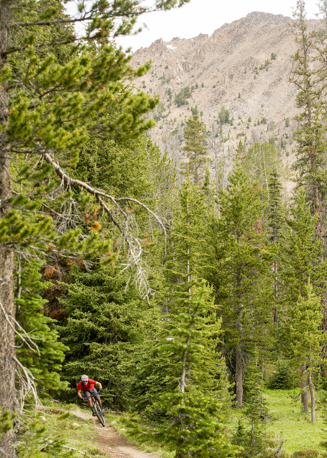 Wilderness mountain biking Photo By Leslie Kehmeier Courtesy of IMBA