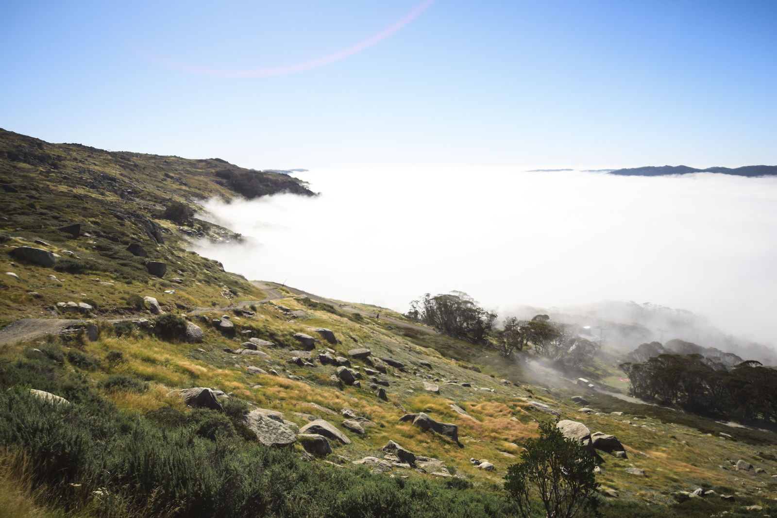 Sunday morning brought fog and lots of it. The whole valley was covered until it finally retreated around 10 30