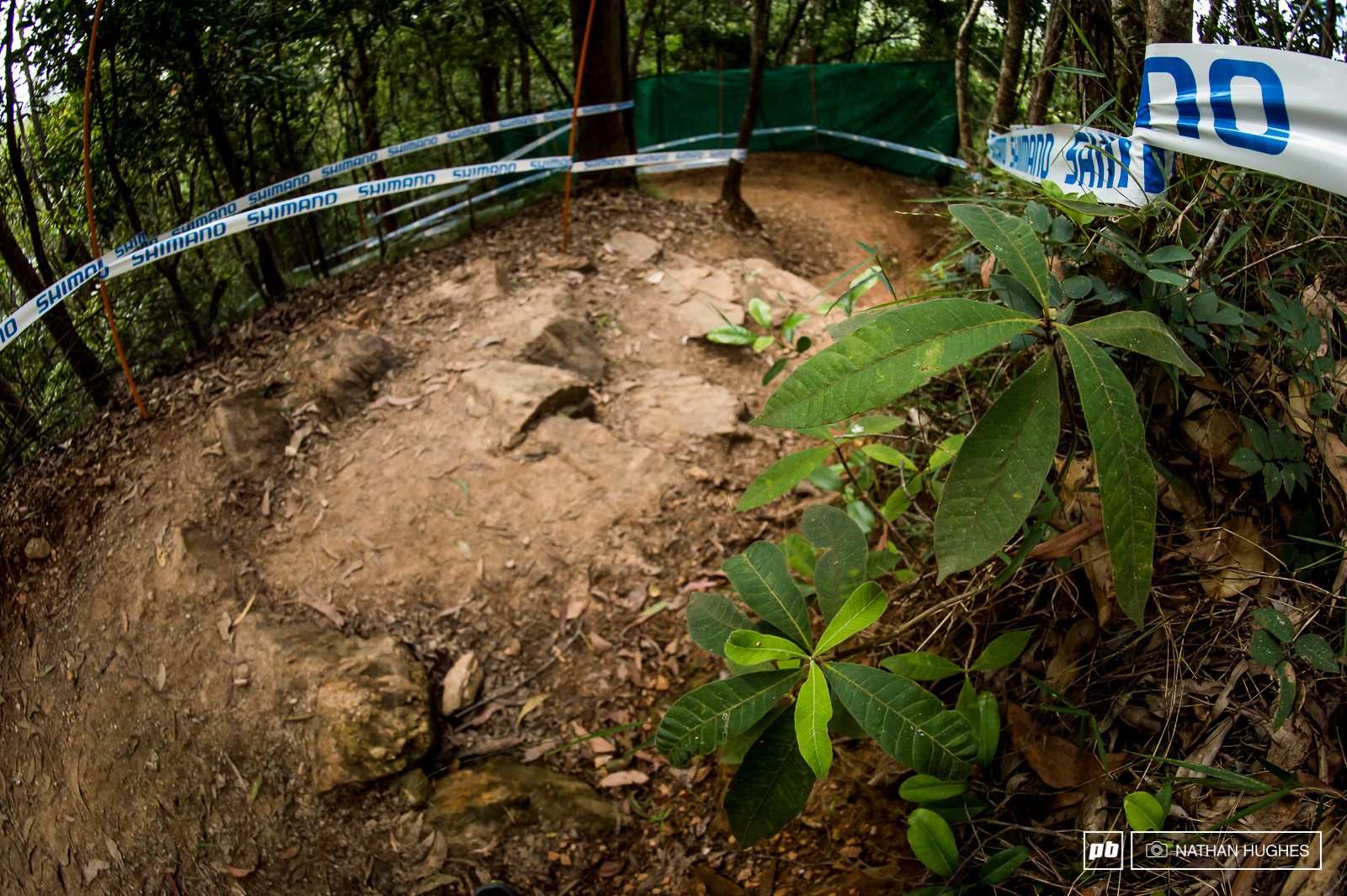 Sweeping berms interspersed with rock steps kick things off high up in the jungle.
