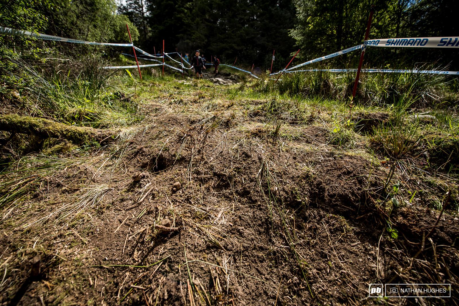 Goodbye horrific axle-deep bog hello grassy bank into a brand new woods diversion.