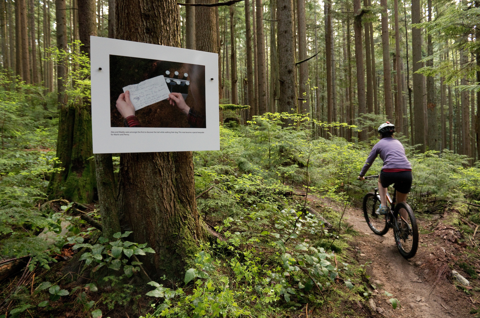 A rider passes one of the prints in the installation.