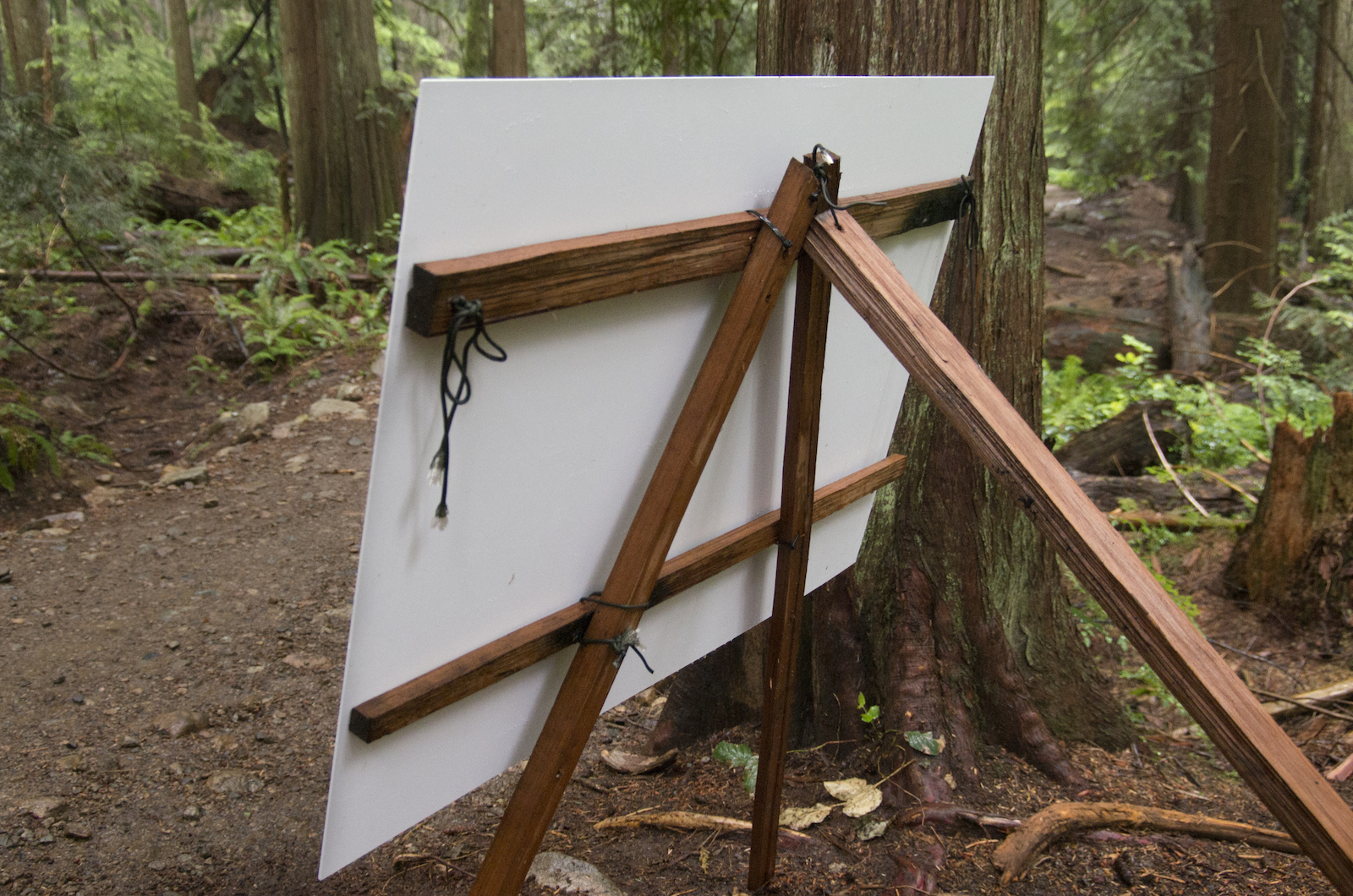 For the installation there were locations where there wasn t a suitable tree so Martin and Penny created easels to hold up the prints.