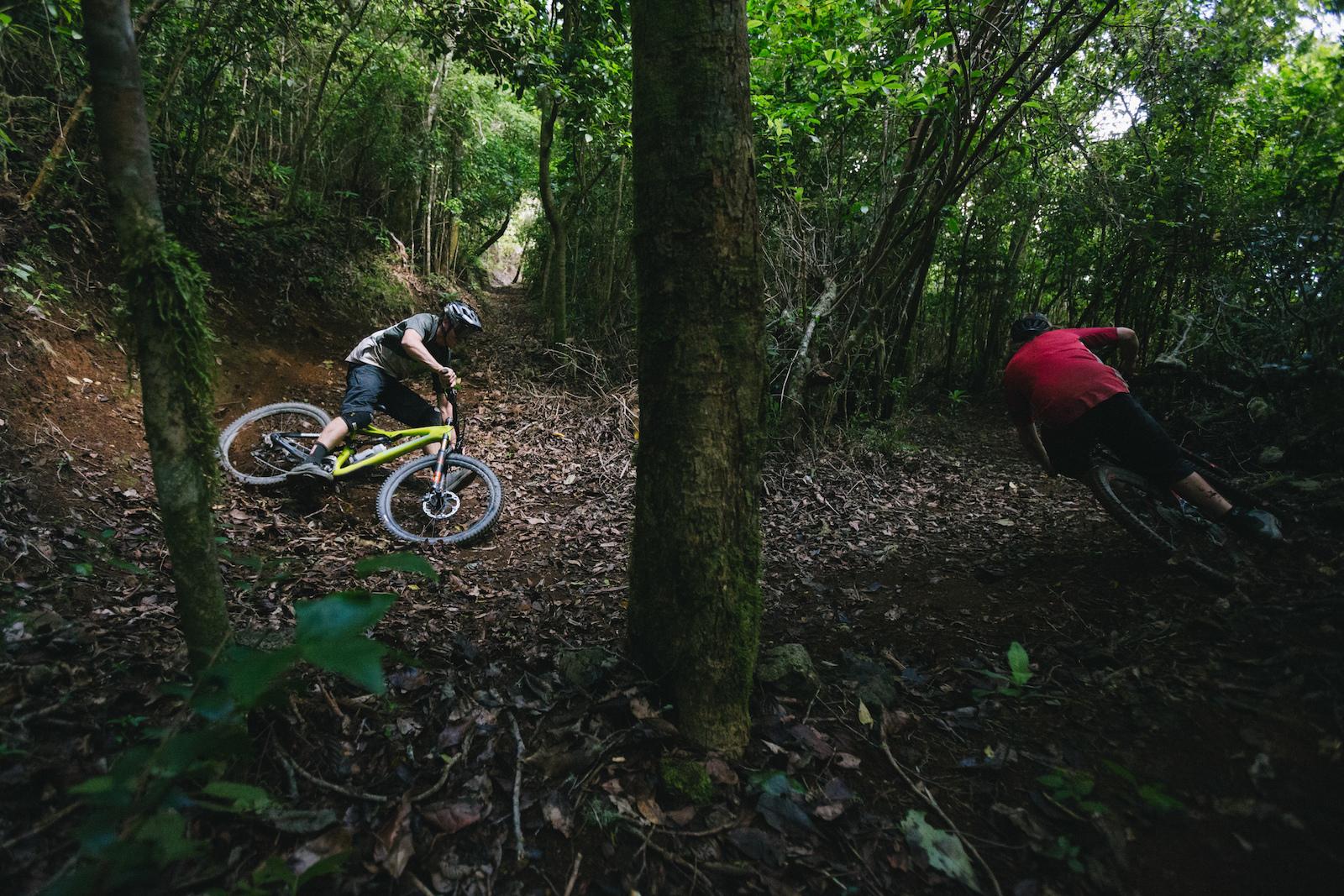 Trail Hunter