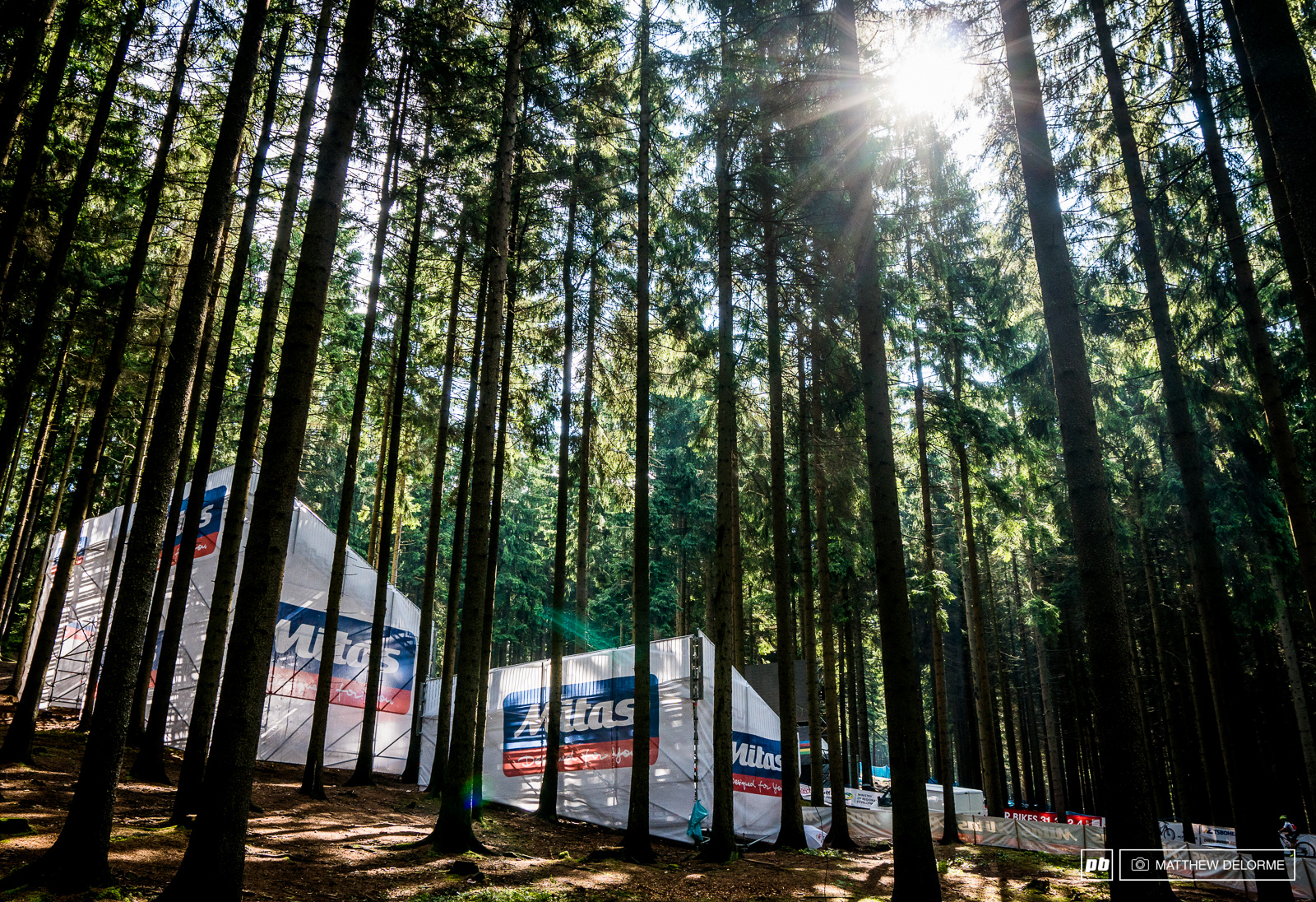 The quiet in the woods didn t last long. The fans were out in force come mid day.