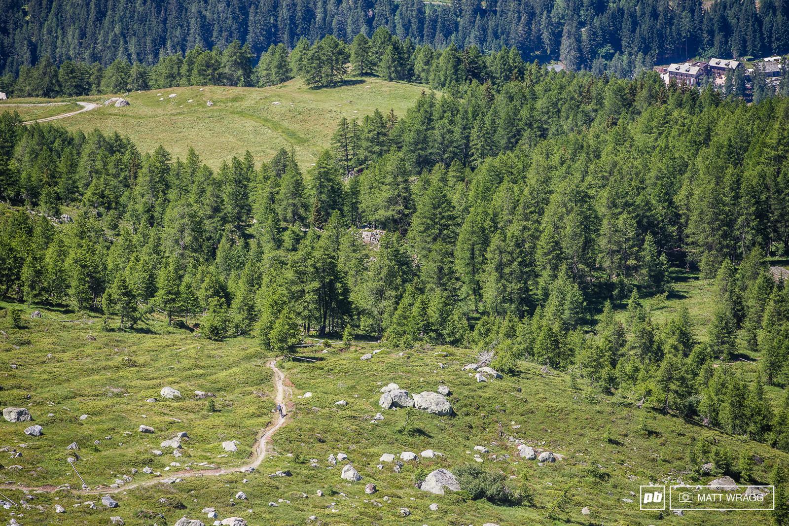 Gusti Wildhaber speeds through the alpine meadow.