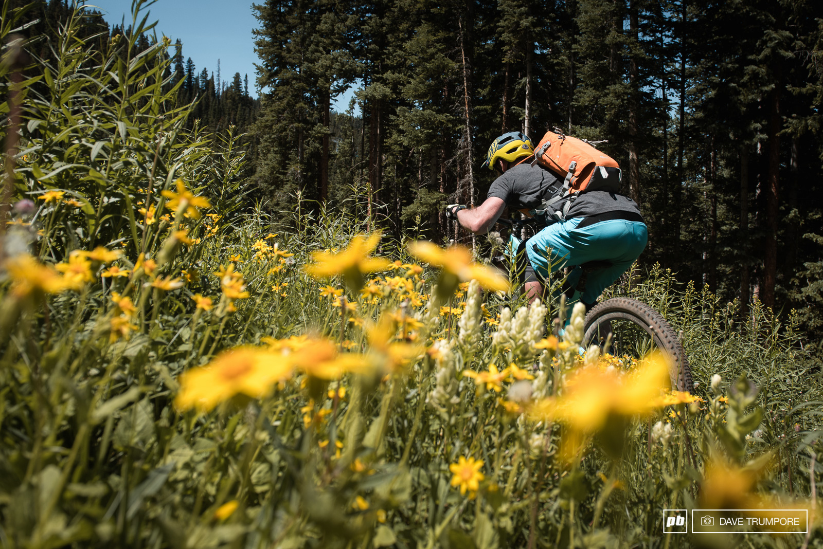 Tucking through the flowers near the top of stage 3.