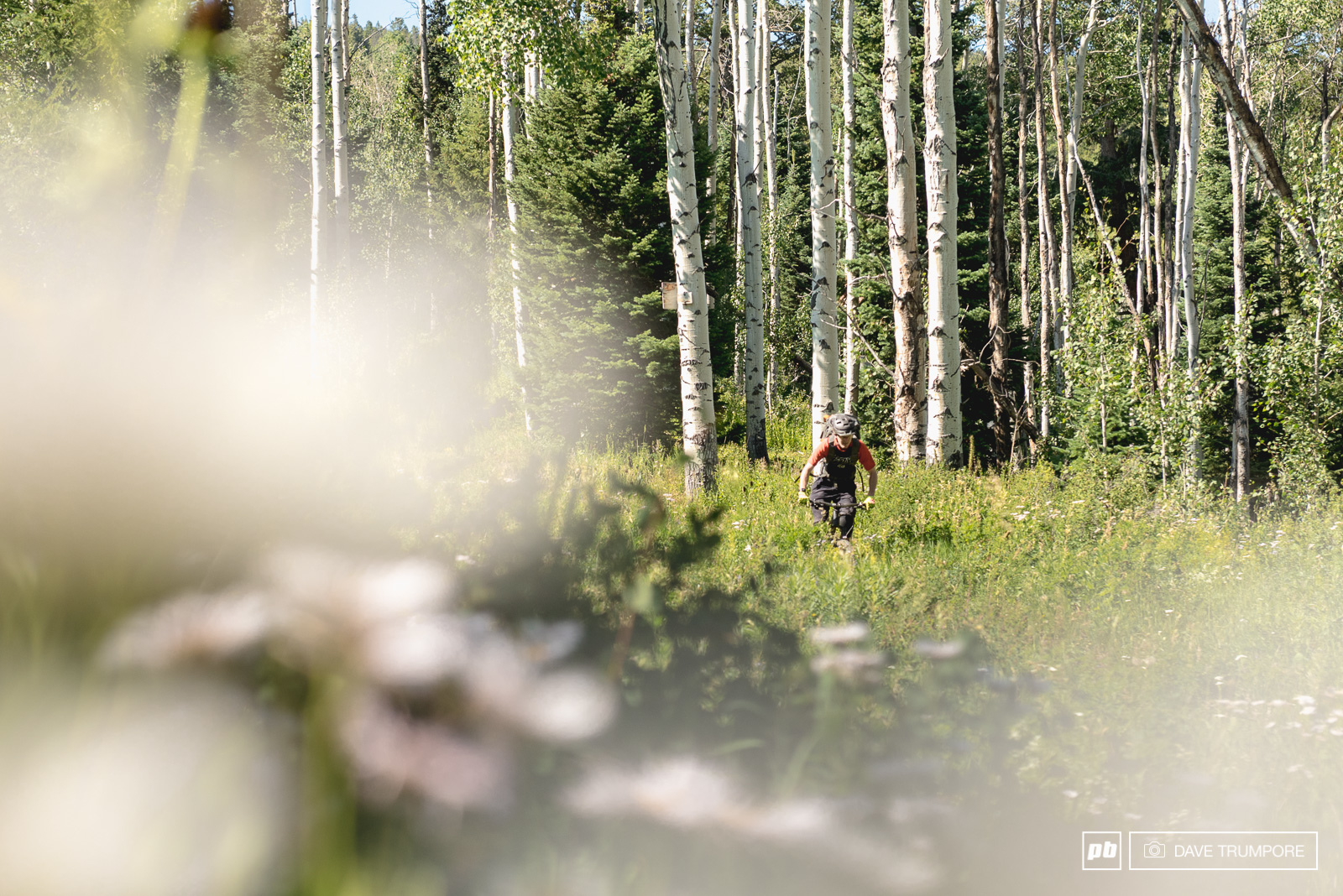 Classic Colorado riding is on top this weekend with single track twisting in and out of aspen trees and across open grassy meadows often times at very high speed.