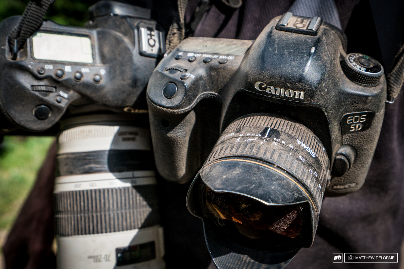 The dust isn t kind to camera gear.