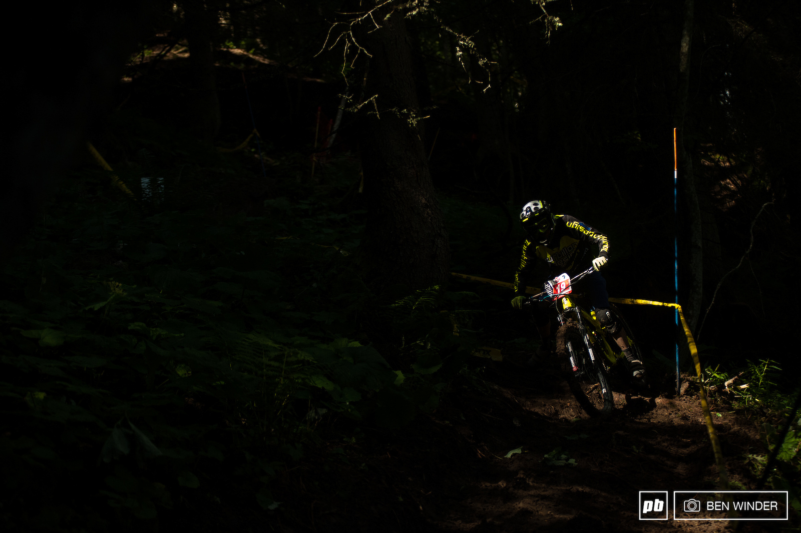 Pockets of light through the trees creating dappled light which hid many roots from riders.