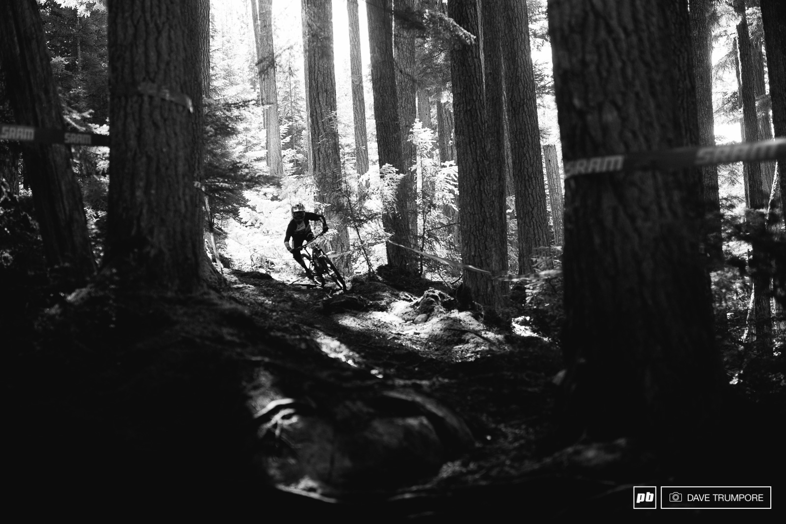 With the sun blazing overhead and not a cloud in the sky it s not just the high temps riders will have to watch out for. The incredibly spotty light in the woods is also making it very hard to see the holes stumps and roots hidden just below the loamy surface of things.