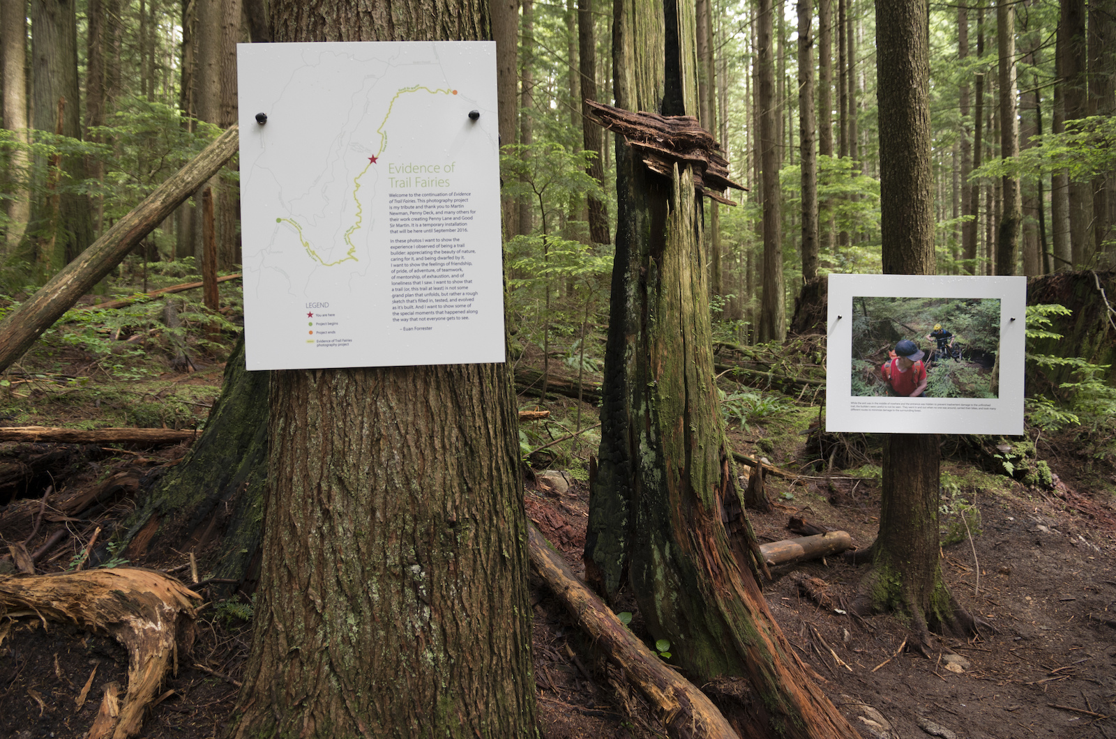 At the various trail intersections we placed maps and descriptions of the project.