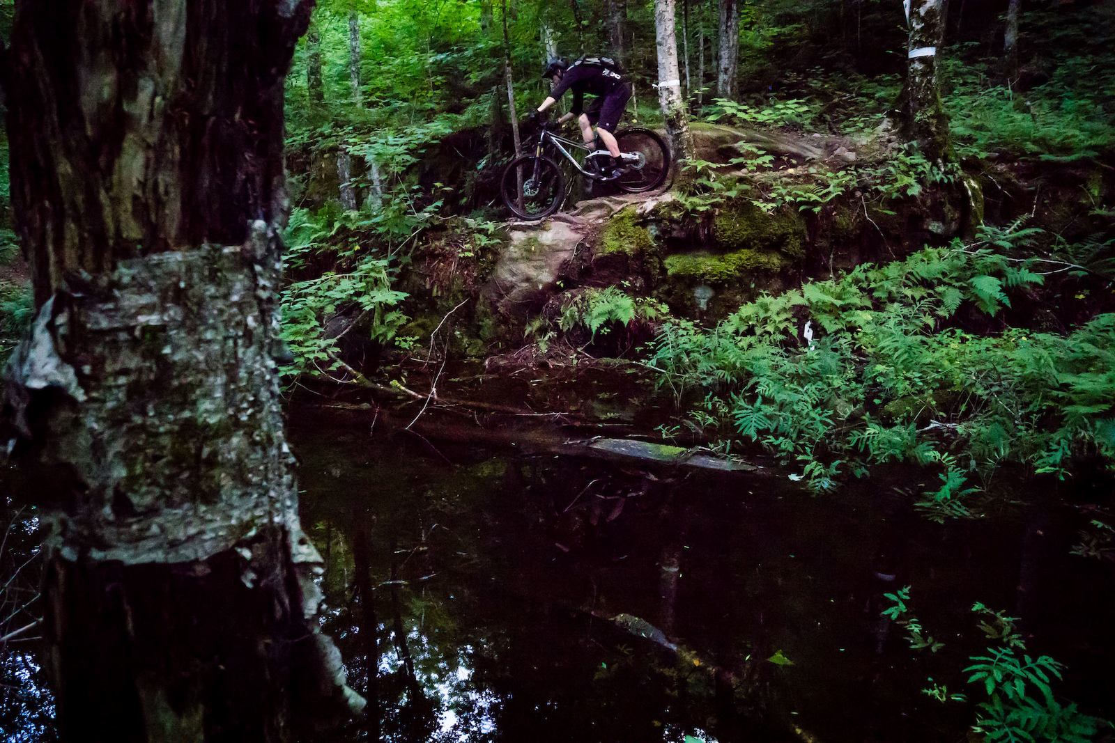 David tearing down one of the more Jurassic Park trails at Vall e Bras-du-Nord. PHOTO Ben Gavelda