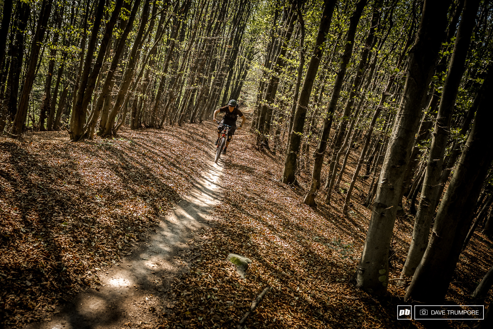 The top of stage 4 is super wide but with only a narrow bit of trail that is clear of dried out and fallen leaves.
