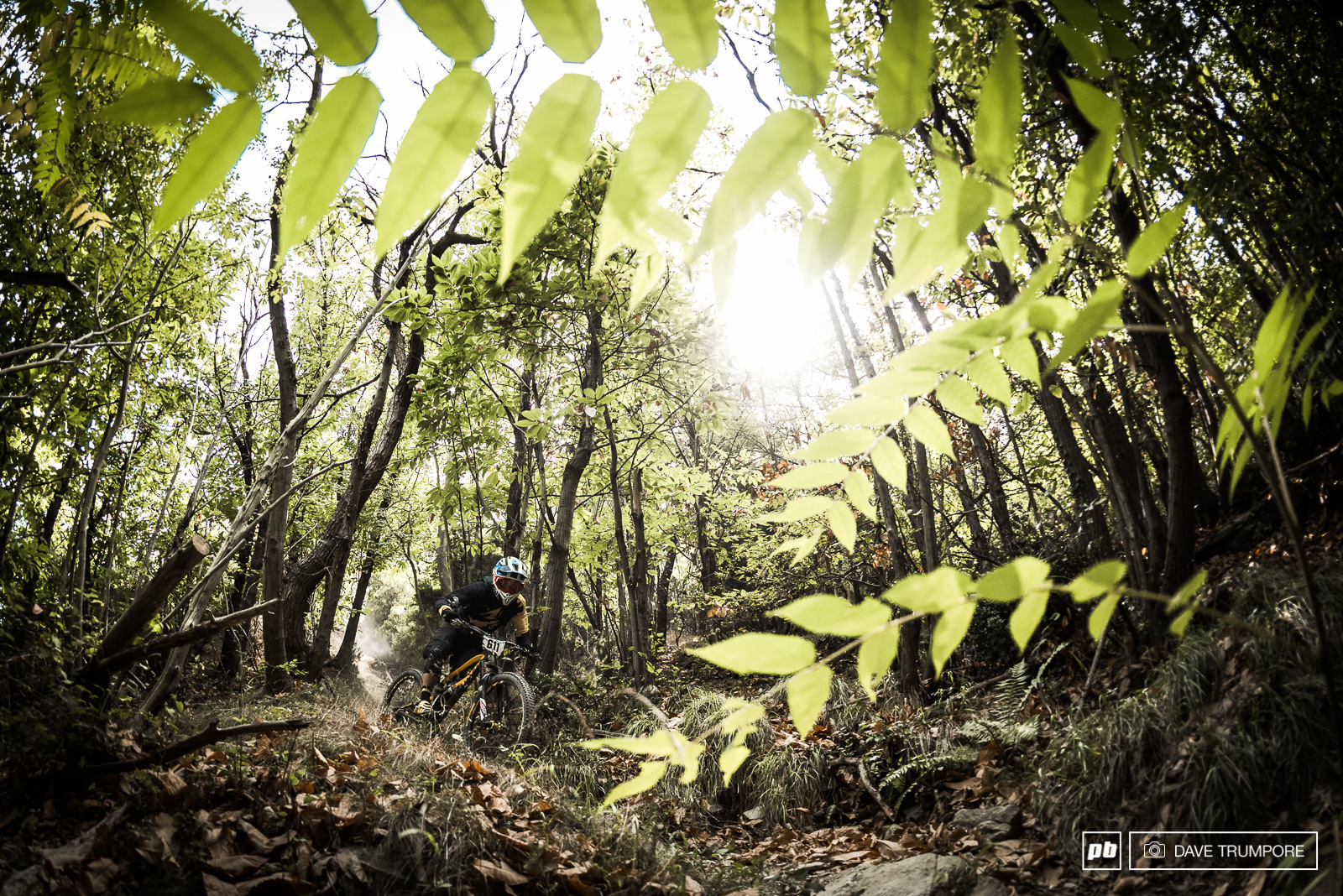 World Cup regular Eliot Heap is once again trying his hand at the EWS.