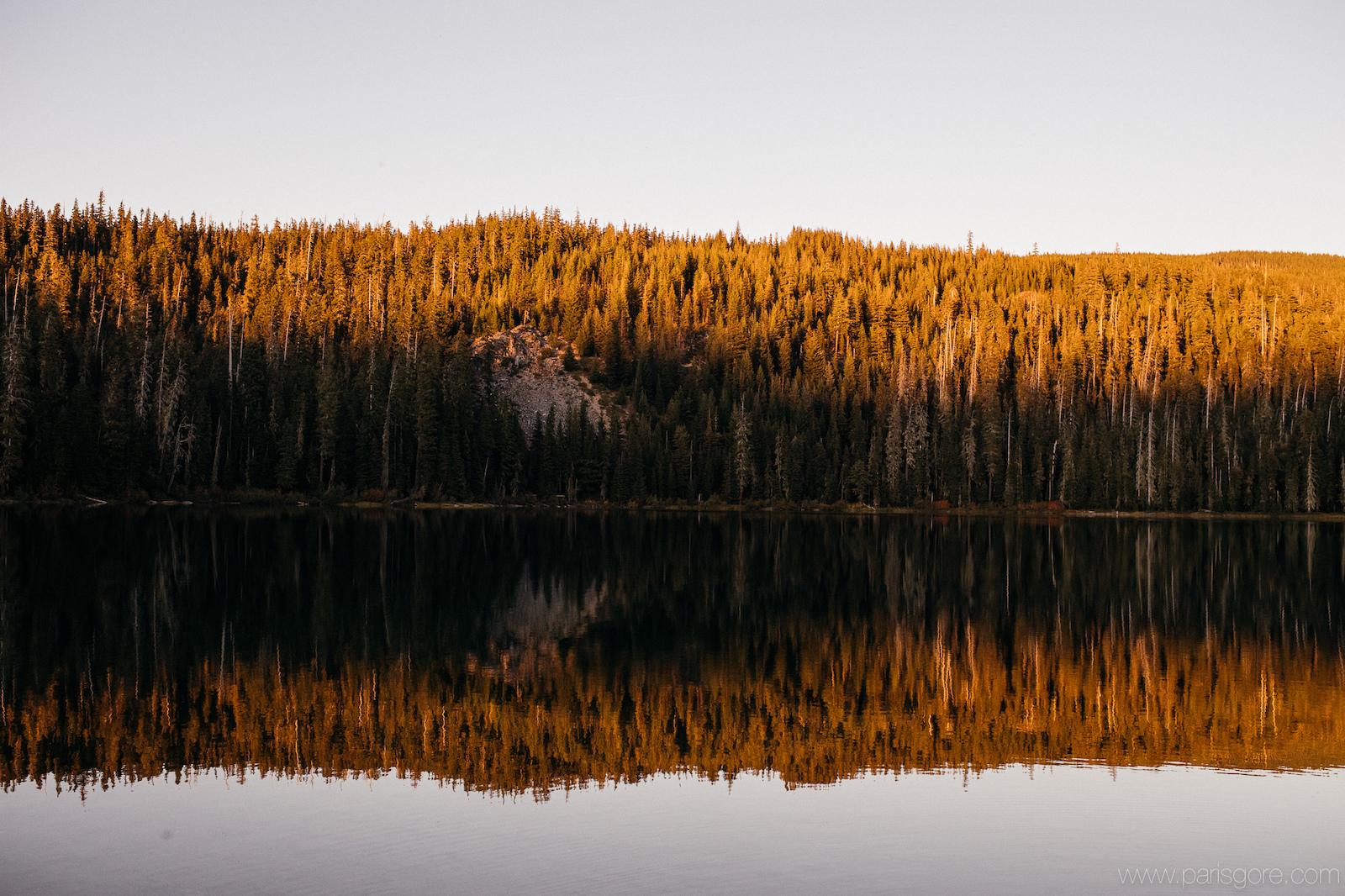 Trans-Cascadia 2016