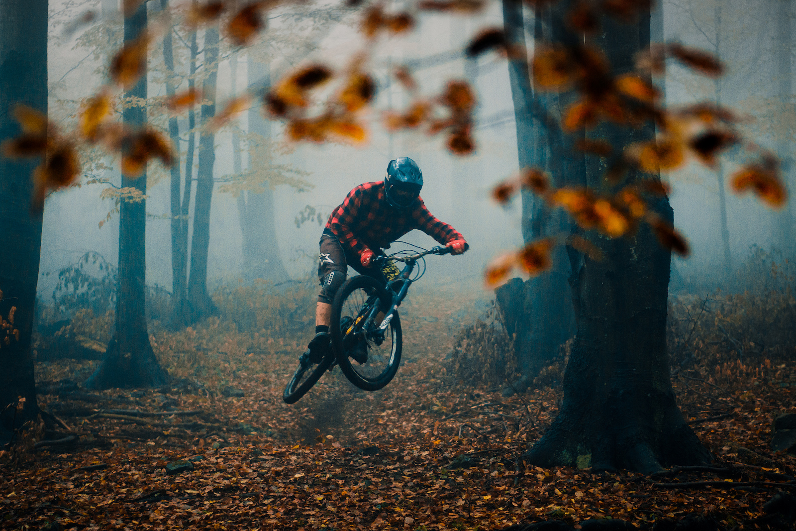 Autumn conditions as we like it