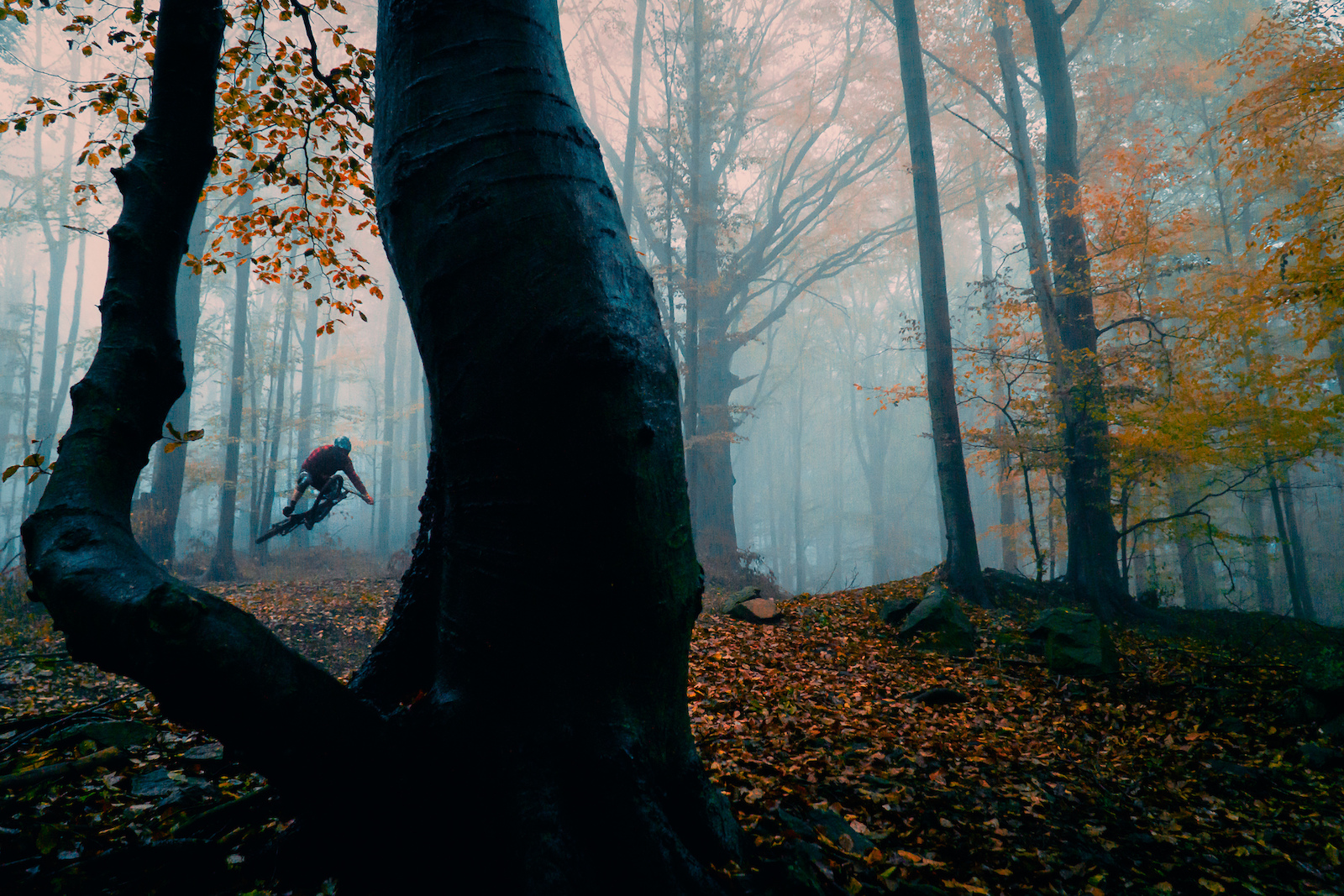 Shot this photo while filming our new video Wild Trails everyweekisawesome