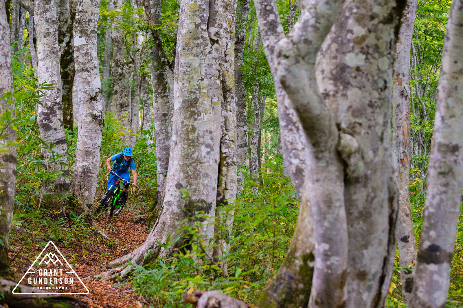 KC Deane mountain biking in Nozawa Onsen