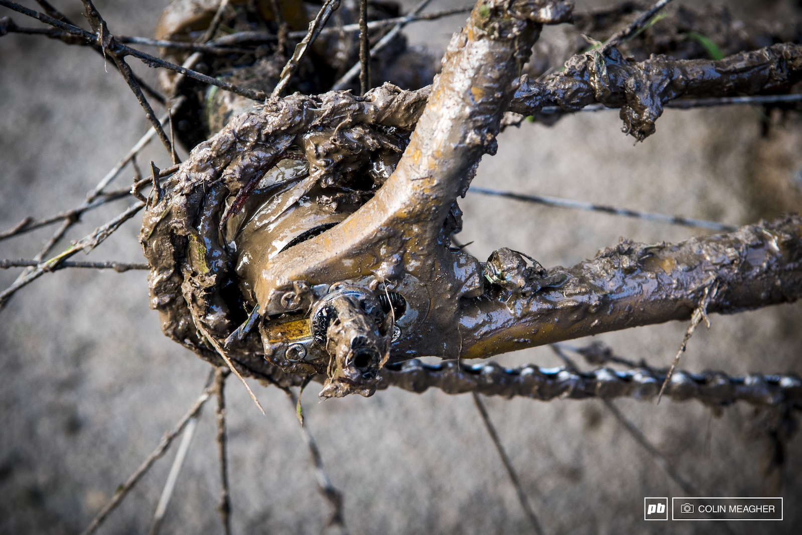 Why race a single speed for CX Kruger Farm doled out a exactly the reason why.