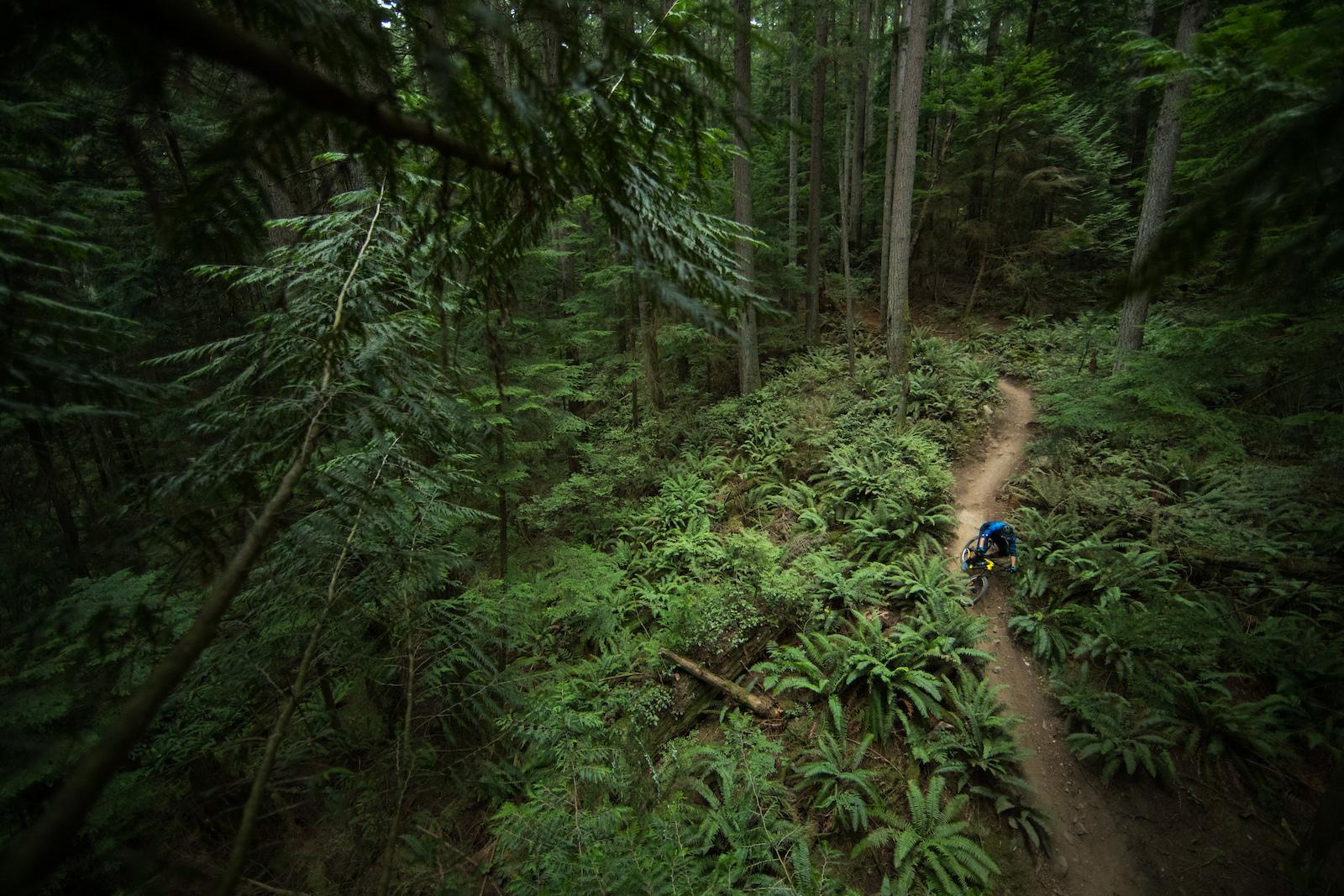 Thomas Vanderham on Mount Seymour, British Columbia