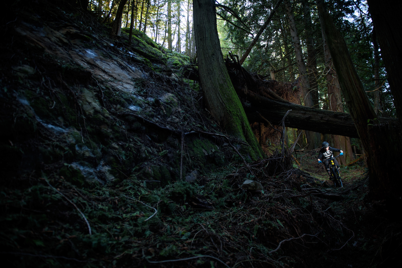 Rocky Mountain Slayer Photo James Lissimore