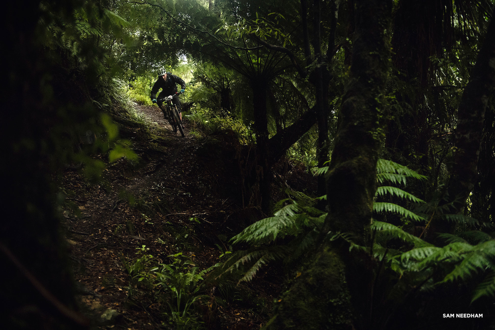 R-Dog s 2017 NZ Enduro Story