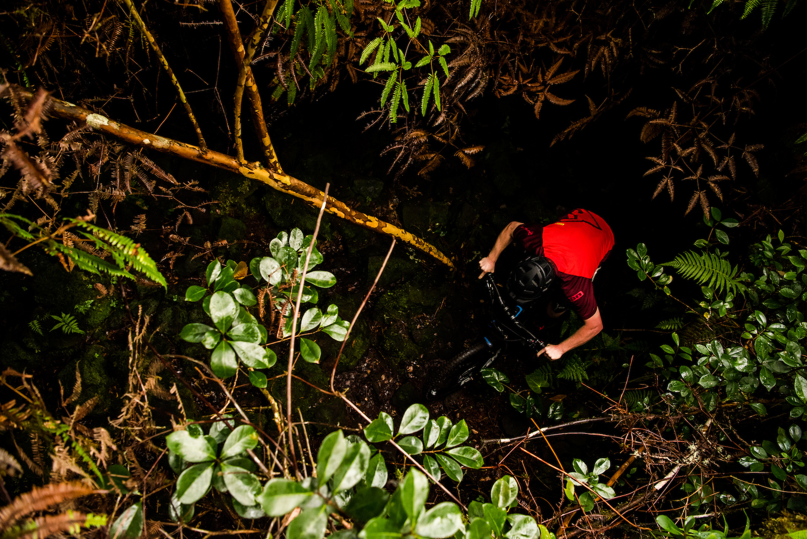 Mike rides through the thickest of thick jungle. Image by Bruno Long