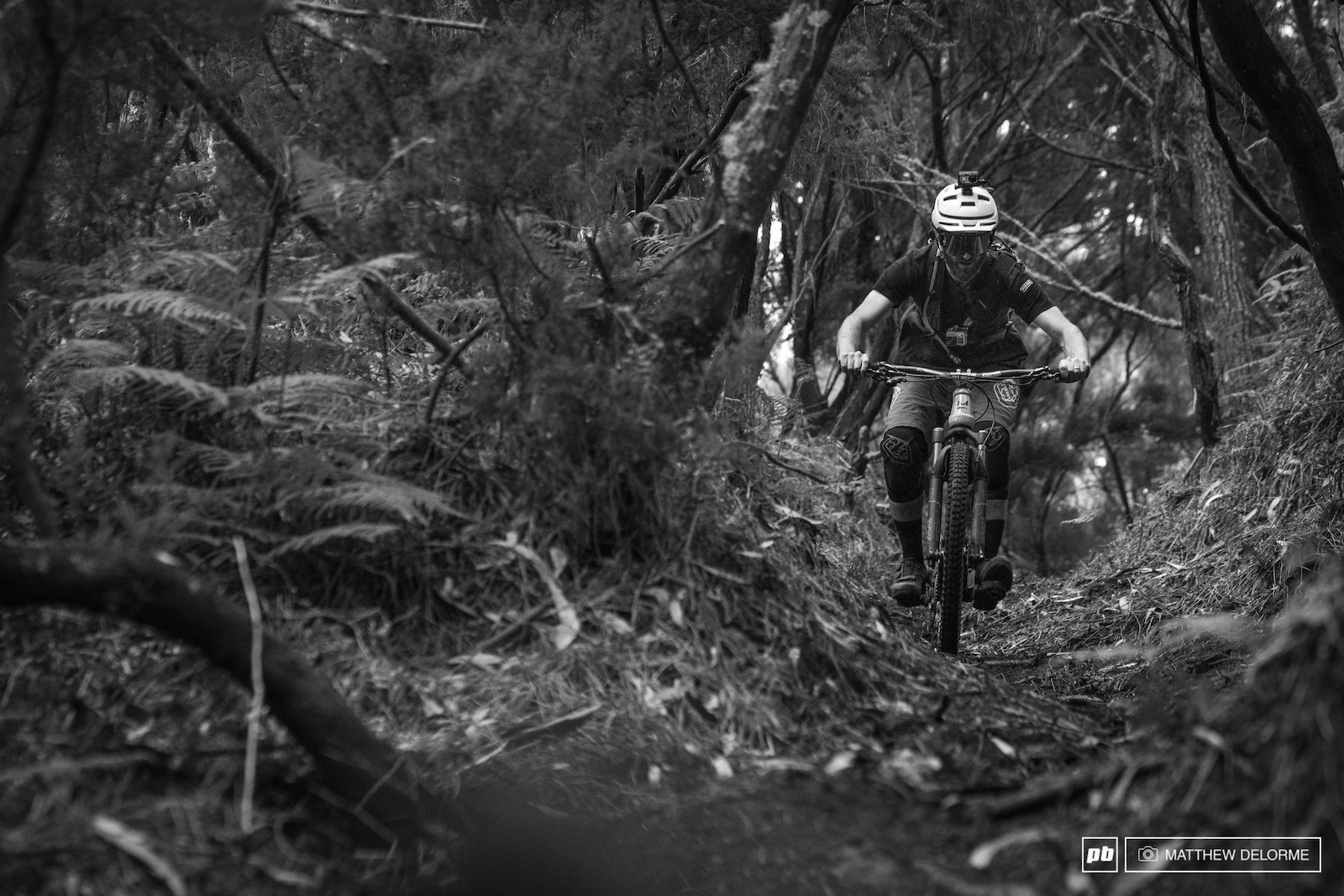 More loamy goodness in stage four. Rick getting the tunnel vision on the course preview.