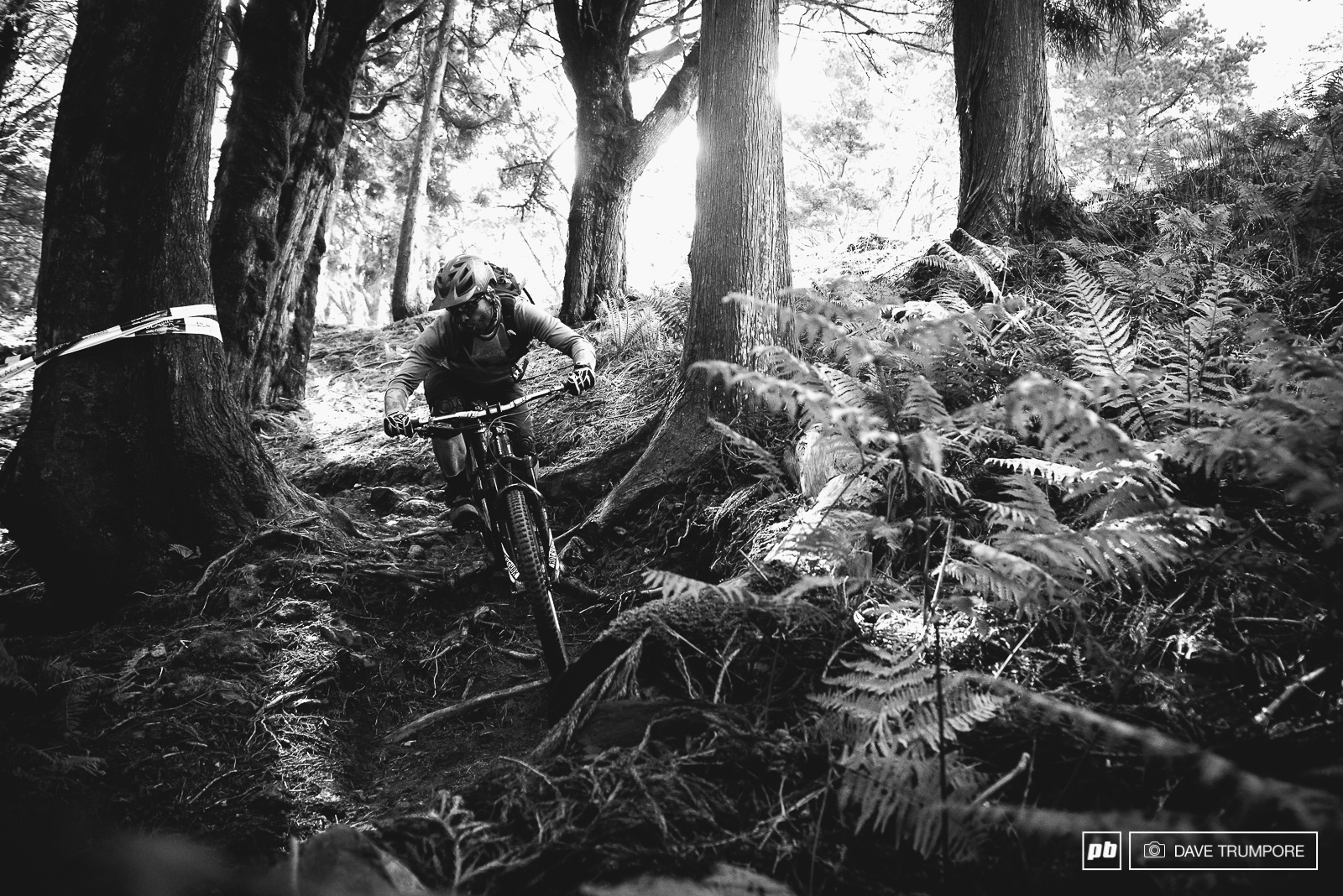 Delorme navigates the roots on stage 7.